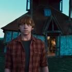Ron Weasley / Ron Wemel: biografie