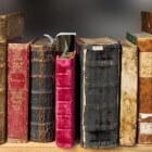 Veel gelezen schrijver Harold Robbins
