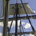 Tall Ships (zeilreuzen) SAIL Amsterdam 2020
