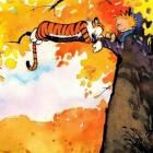 "Alles over ""Calvin and Hobbes"""