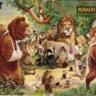 De Reinaert: dierverhaal, auteur, manuscript en bewerkingen