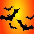 Activiteiten en spelletjes voor Halloween