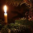 Kerst met een laag budget: Goedkope en gratis kerstbomen