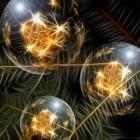 Kerstmis: de traditie van de kerstboom en de kerststal