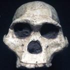 De eerste mensen op aarde