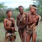 Van jager-verzamelaar tot boer
