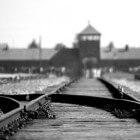 Concentratiekampen: de tien beruchtste kampen van de nazi's