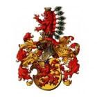 Ontwikkeling van de Habsburgse Nederlanden