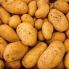 Hoe de aardappel onze geschiedenis schrijft