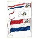 De Bataafse Republiek (1795-1801) en Frans-Bataafse tijd