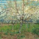 Schilderijanalyse: 'De roze boomgaard' van Vincent van Gogh