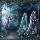 Het werk van Tolkien: de elfen
