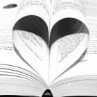 Schrijvers die debuteerden met een literaire roman in 2015