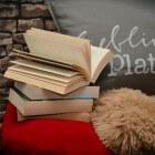 Laagdrempelige literatuur voor de beginnende lezer