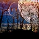 Volksverhalen: mythe, legende, sage, saga, sprookje, fabel