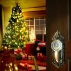 Kerstboom: Een versierde boom