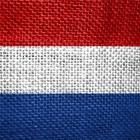 Mannelijke collega's van Koning Willem-Alexander