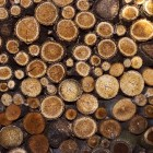 Roemeense volkskunst: houtsnijkunst, weefkunst en volksdans